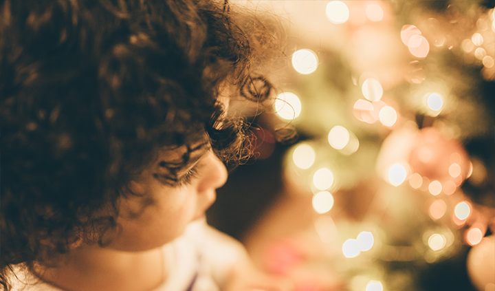 Free Holiday Stock Photos from SocialOwl 7