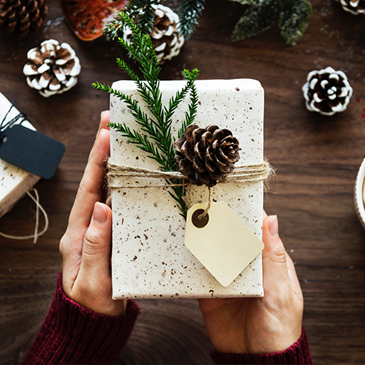 Free Holiday Stock Photos from SocialOwl Instagram 5