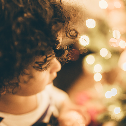 Free Holiday Stock Photos from SocialOwl Instagram 6