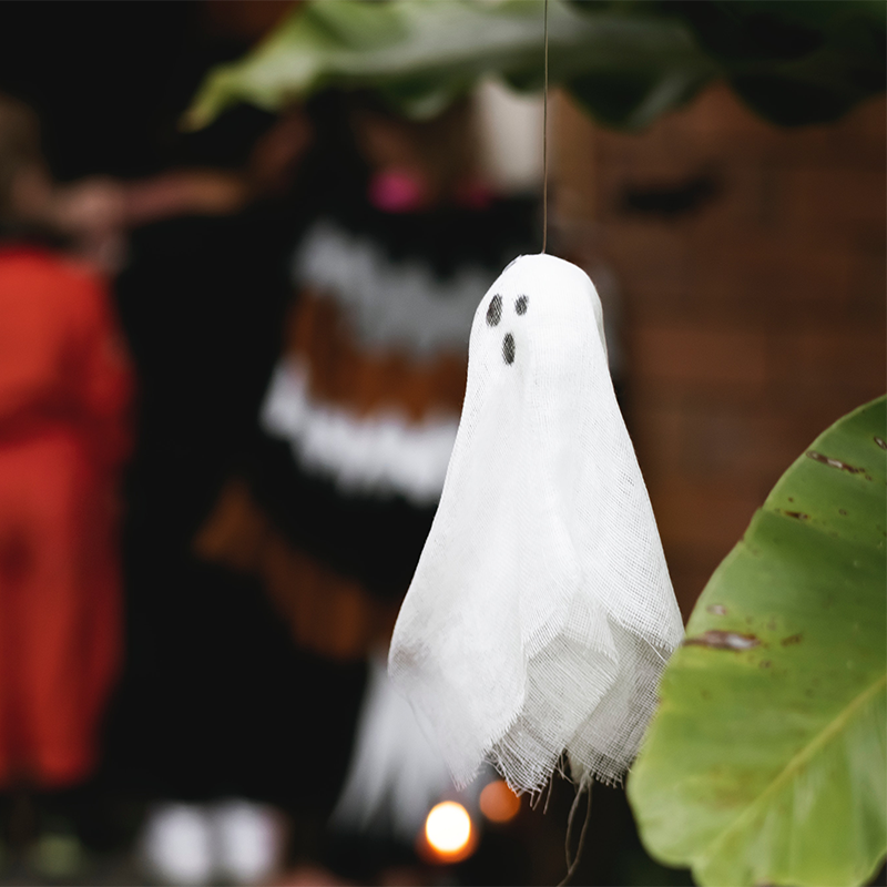 halloween stock photos from socialowl instagram 12