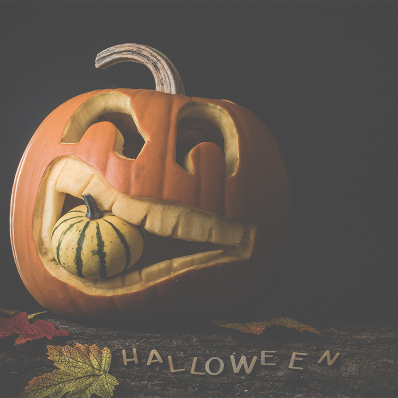 halloween stock photos from socialowl instagram 7