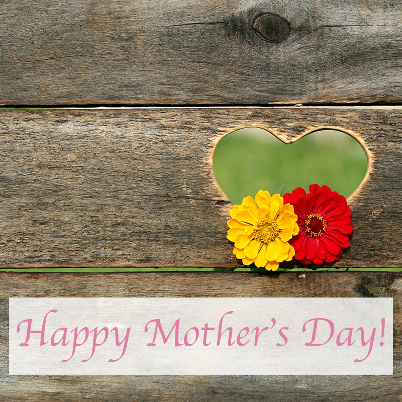 SocialOwl-Free-Mothers-Day-Stock-Photos-Images-Instagram-4