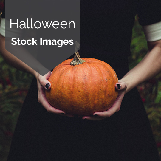 Free Haunted Halloween Stock Images