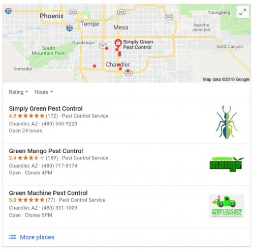 Pest control review example image