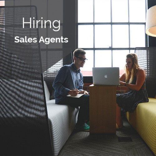 How and When To Hire A Sales Agent in 6 Steps