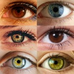 Eye Color Trivia