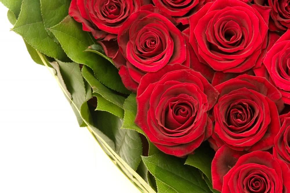 Roser som klassisk bordpynt eller en romantisk gave