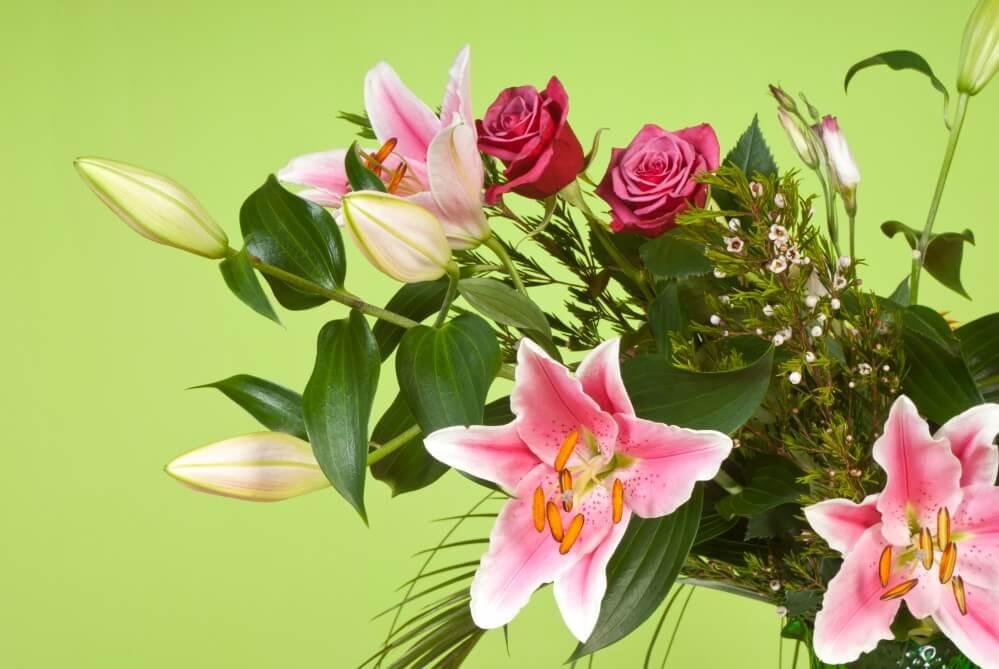 Finn billige blomster og tilbud på blomster