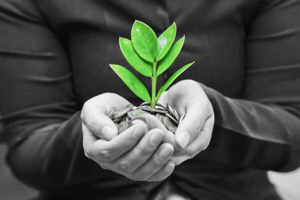 Building Credit Health After a Setback