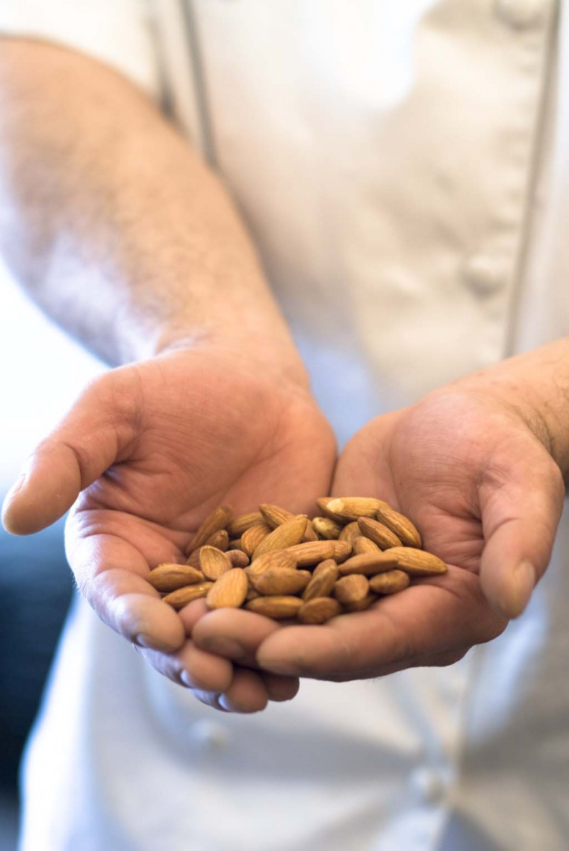 Everything You Need To Know About Almonds