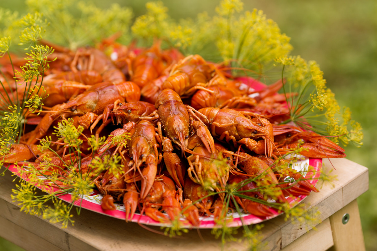 swedish traditions crayfish party