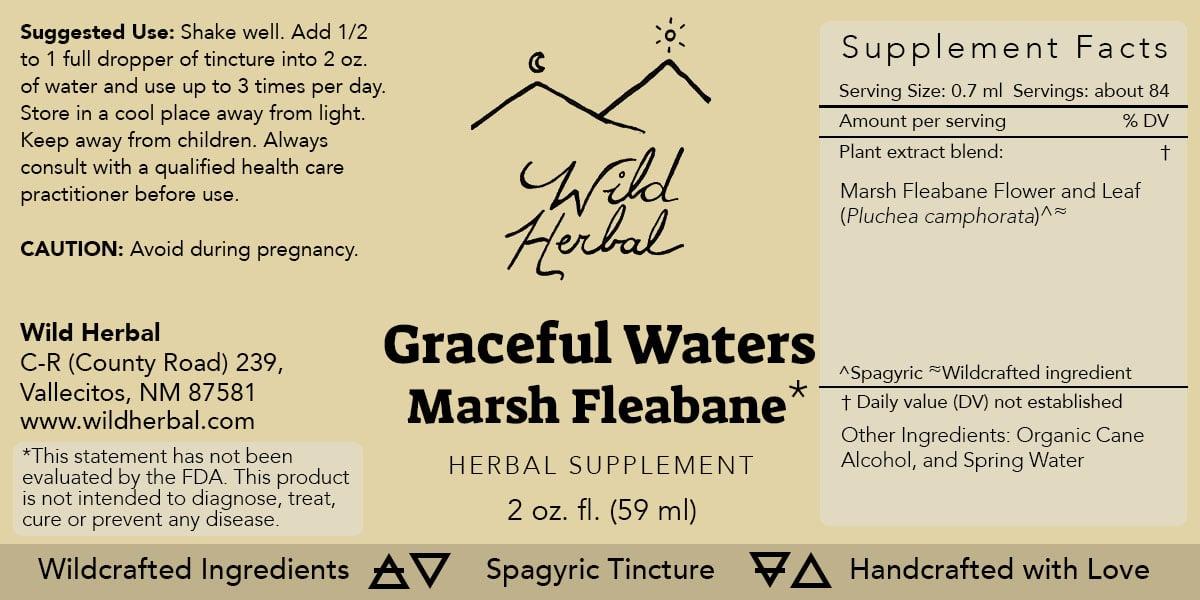 Graceful Waters Marsh Fleabane