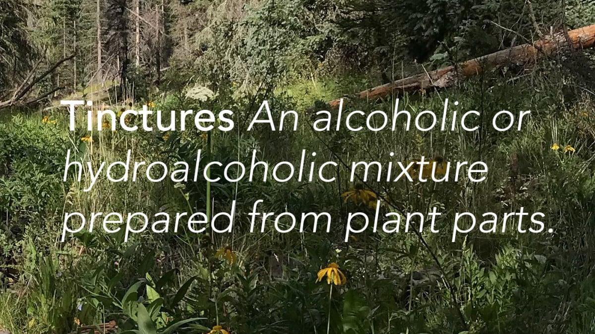 Wild Herbal Glossary