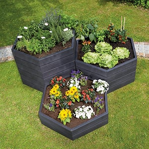 Raised beds are easier to garden less bending required