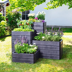 a raised bed creates an instant garden feature
