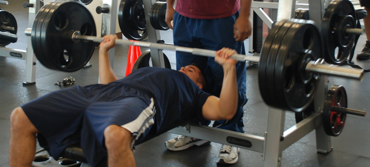 Increase muscle strength through the Doggcrapp training program