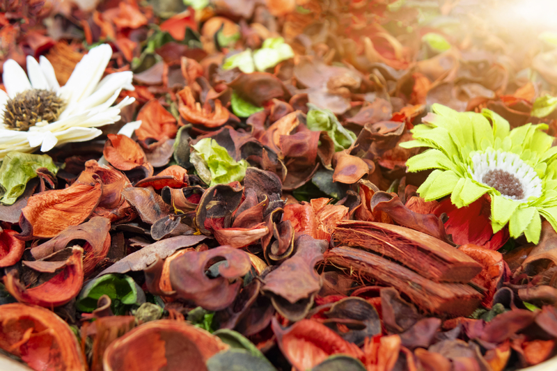 5 Hot Homemade Stovetop Potpourri Recipes For Fall