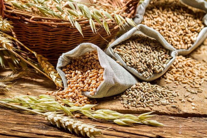 Grain Brain & The Interaction Between Diet & Genes