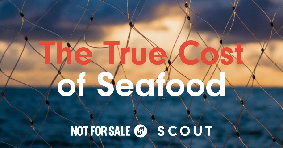 The True Cost of Seafood