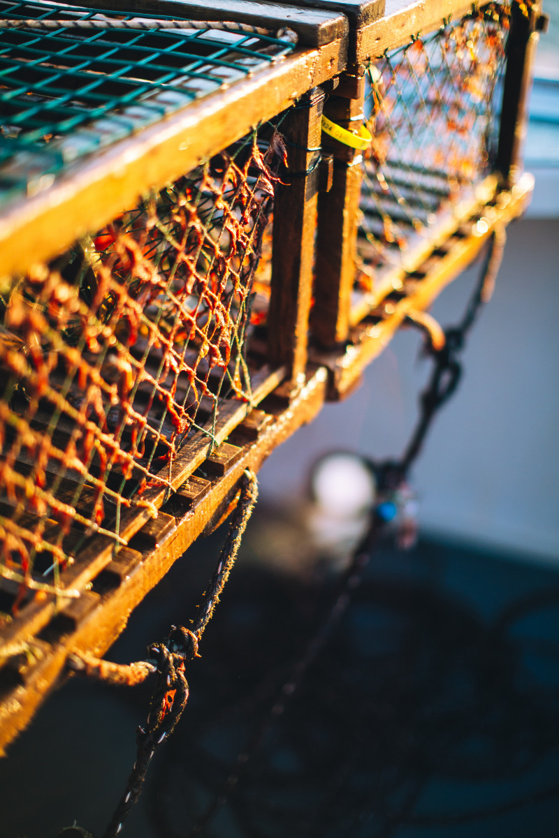 What's Happening with the Mi'kmaq fishery in Nova Scotia, Canada?