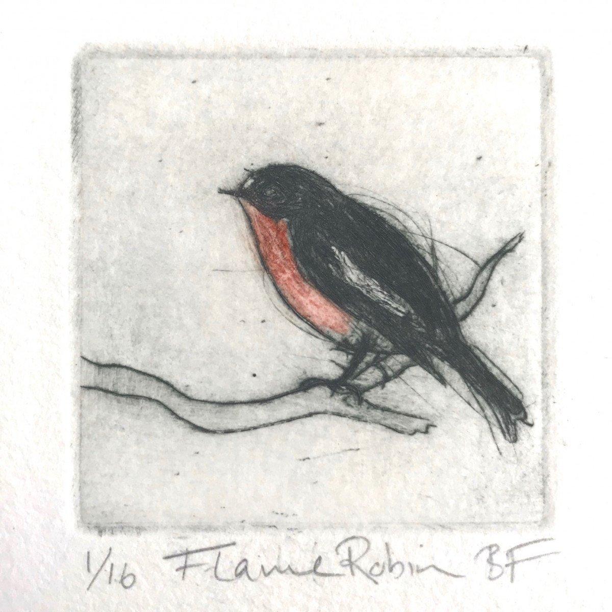 Flame Robin - Bridget Farmer