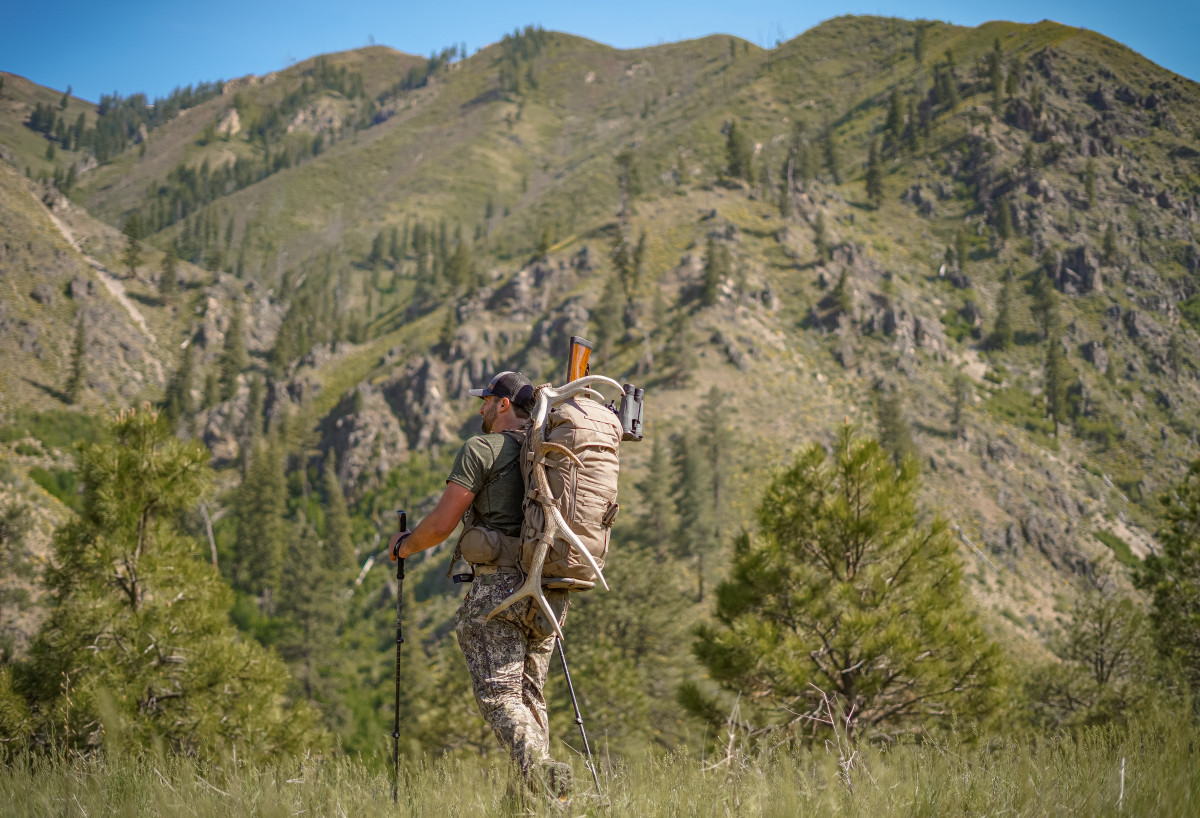 What Are the Five Stages of Hunting?