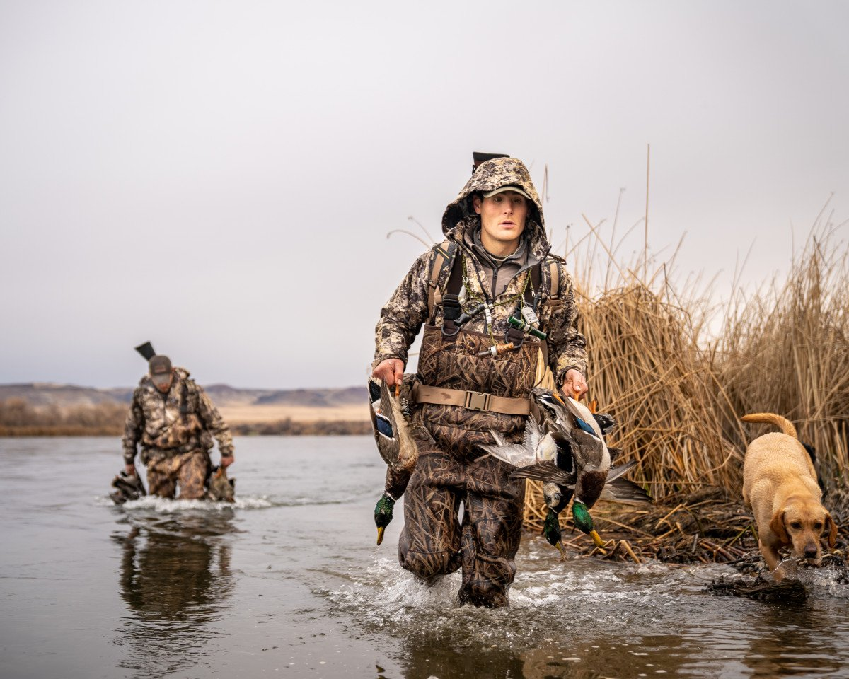 How To Train Your Hunting Dog