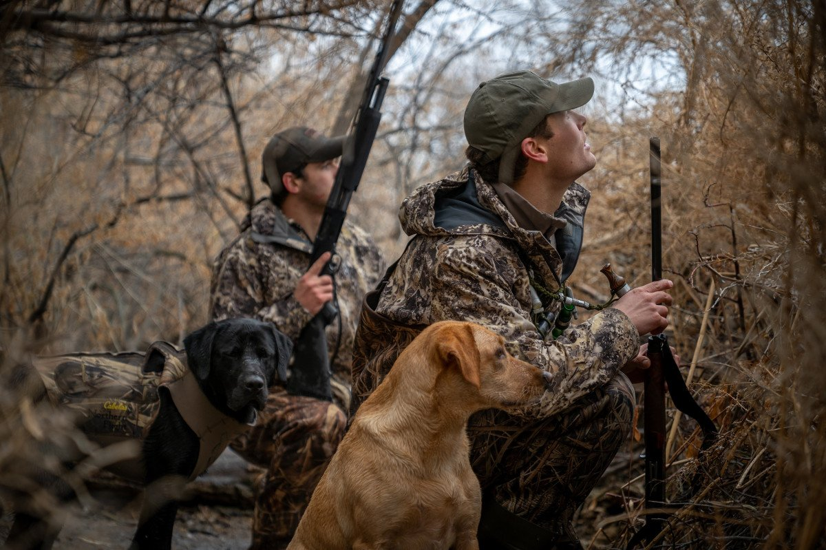 Dog Safety While Camping, Hunting, and Fishing: A Guide for Outdoor Enthusiasts