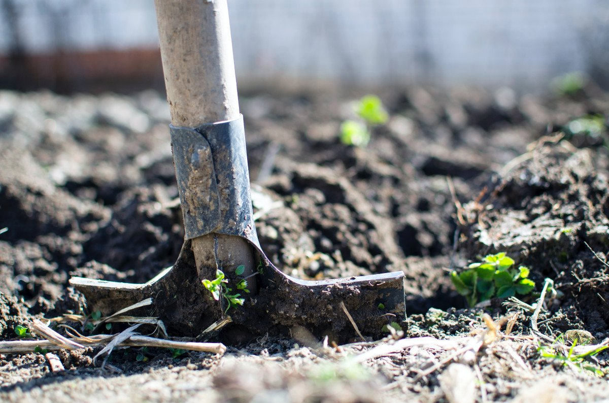 What Is Self-Sufficient Living and How Can You Pursue It?