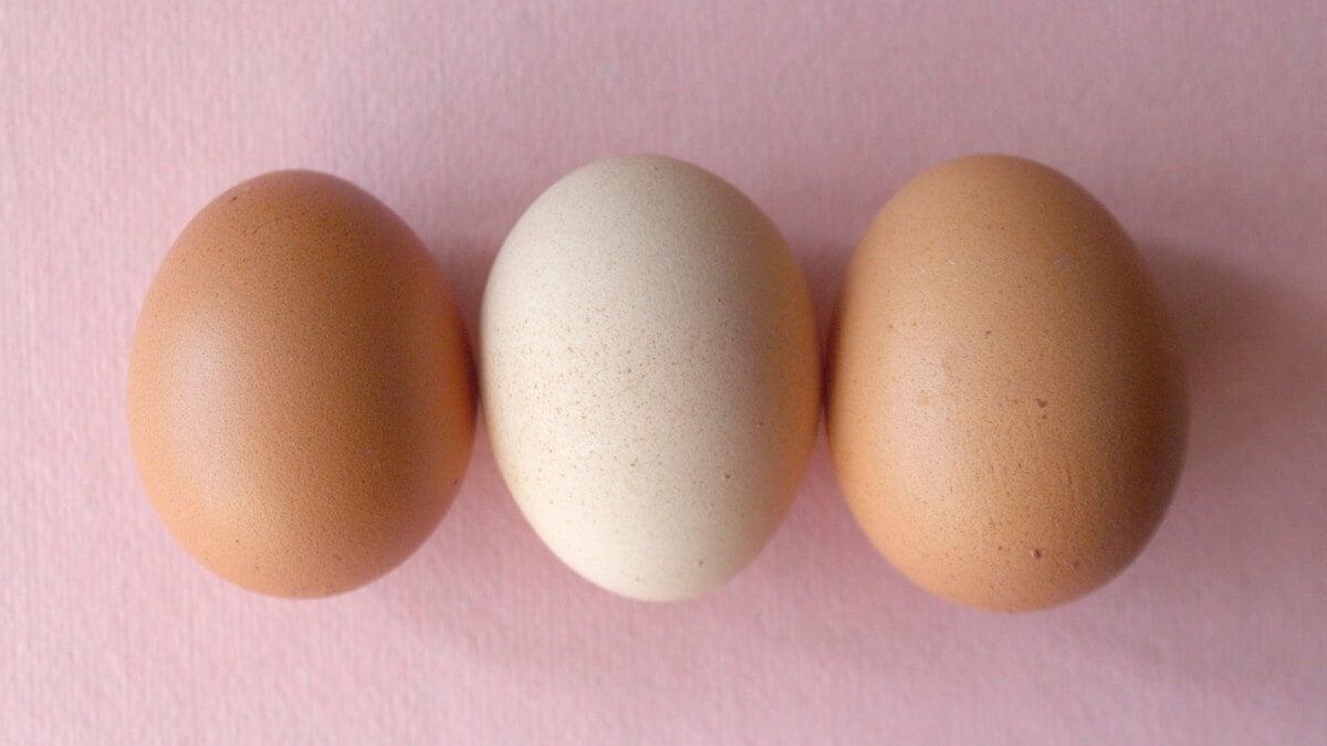 How do I know my ovulation day?