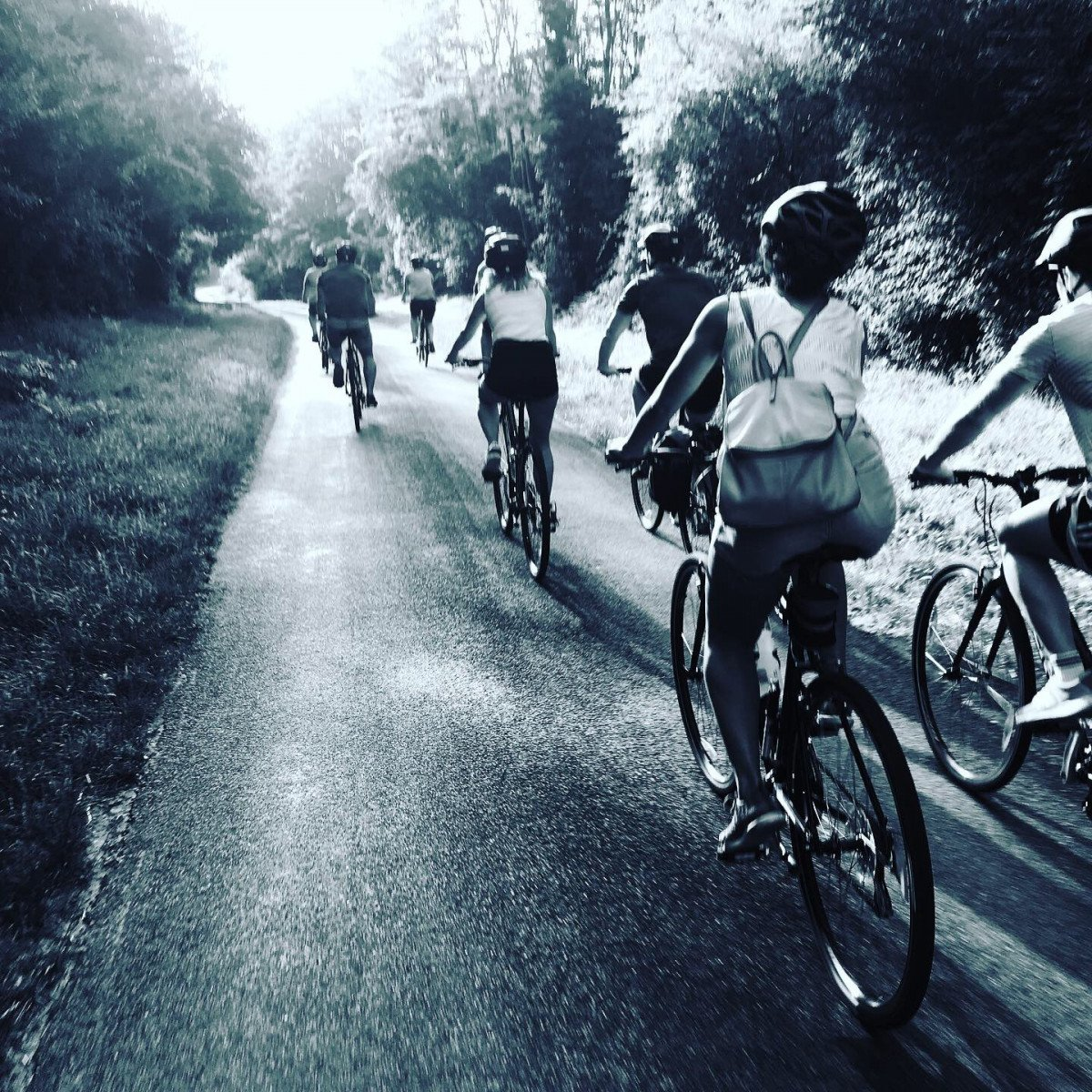 Cycling Holidays in Gascony and Gascogne bike hire