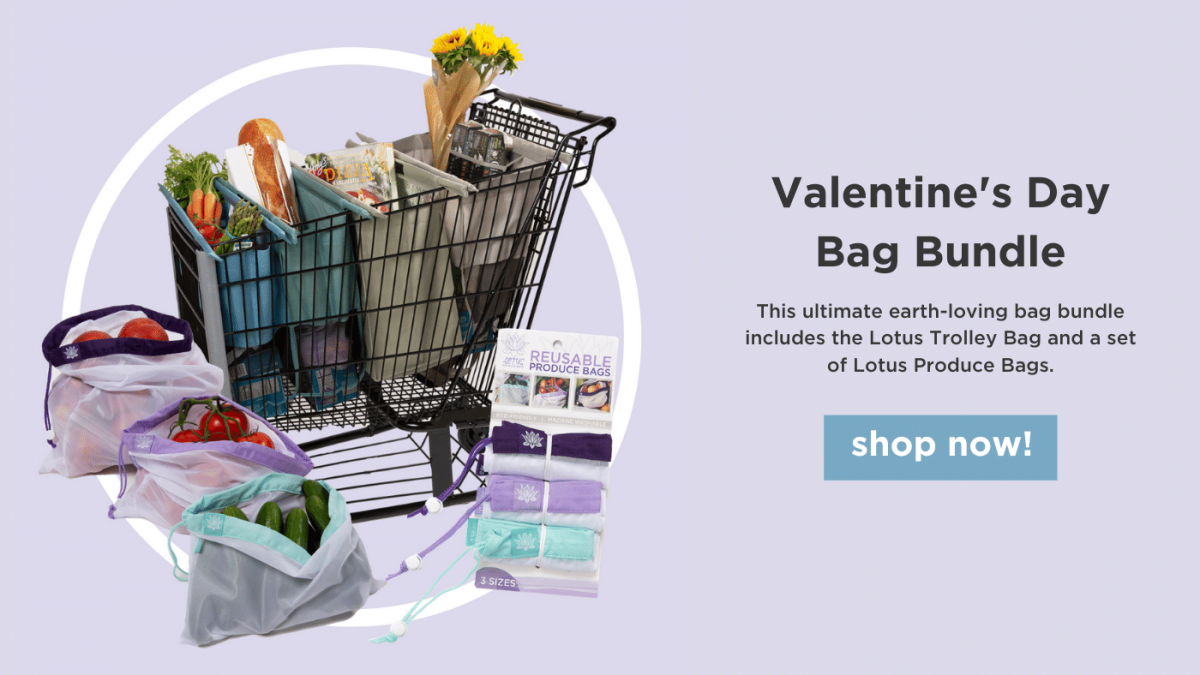 valentines day bag bundle shop now!