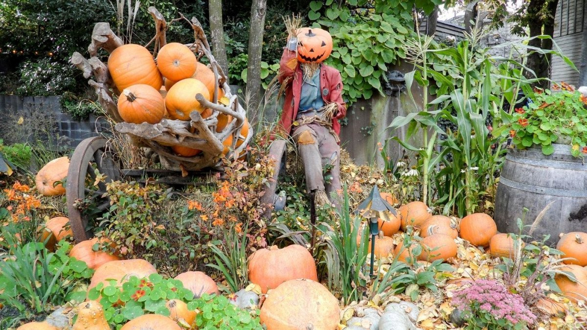 How to Have an Eco-Friendly and Safe Halloween in 2020