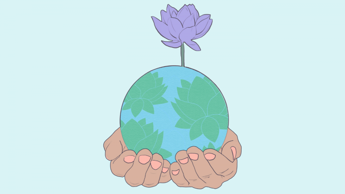 How to Plant Lotus Seeds of Sustainability for Earth Day 2021