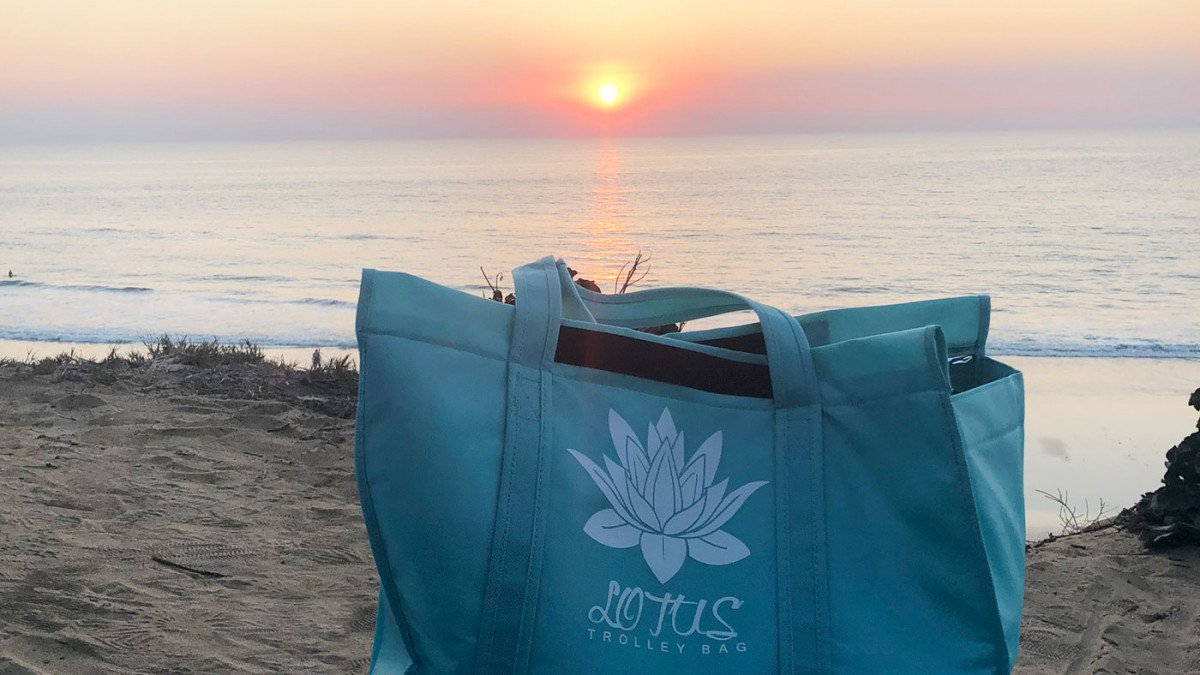 More Ways to Use Your Lotus Trolley Bag