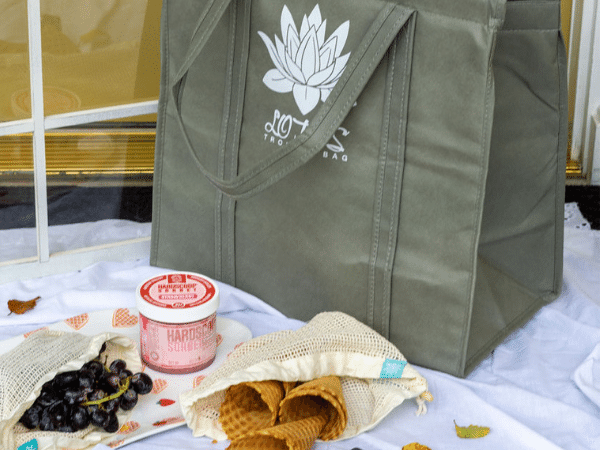 take the insulated lotus bag on a picnic