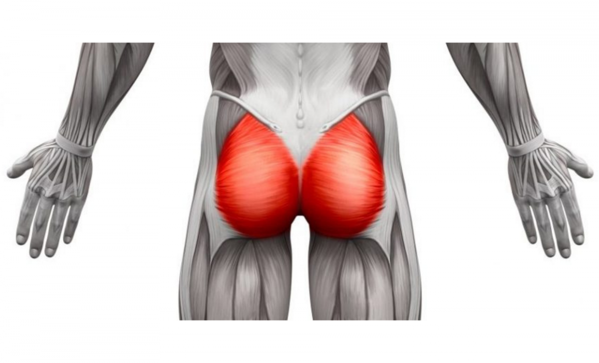 Best Exercises to Grow Glutes