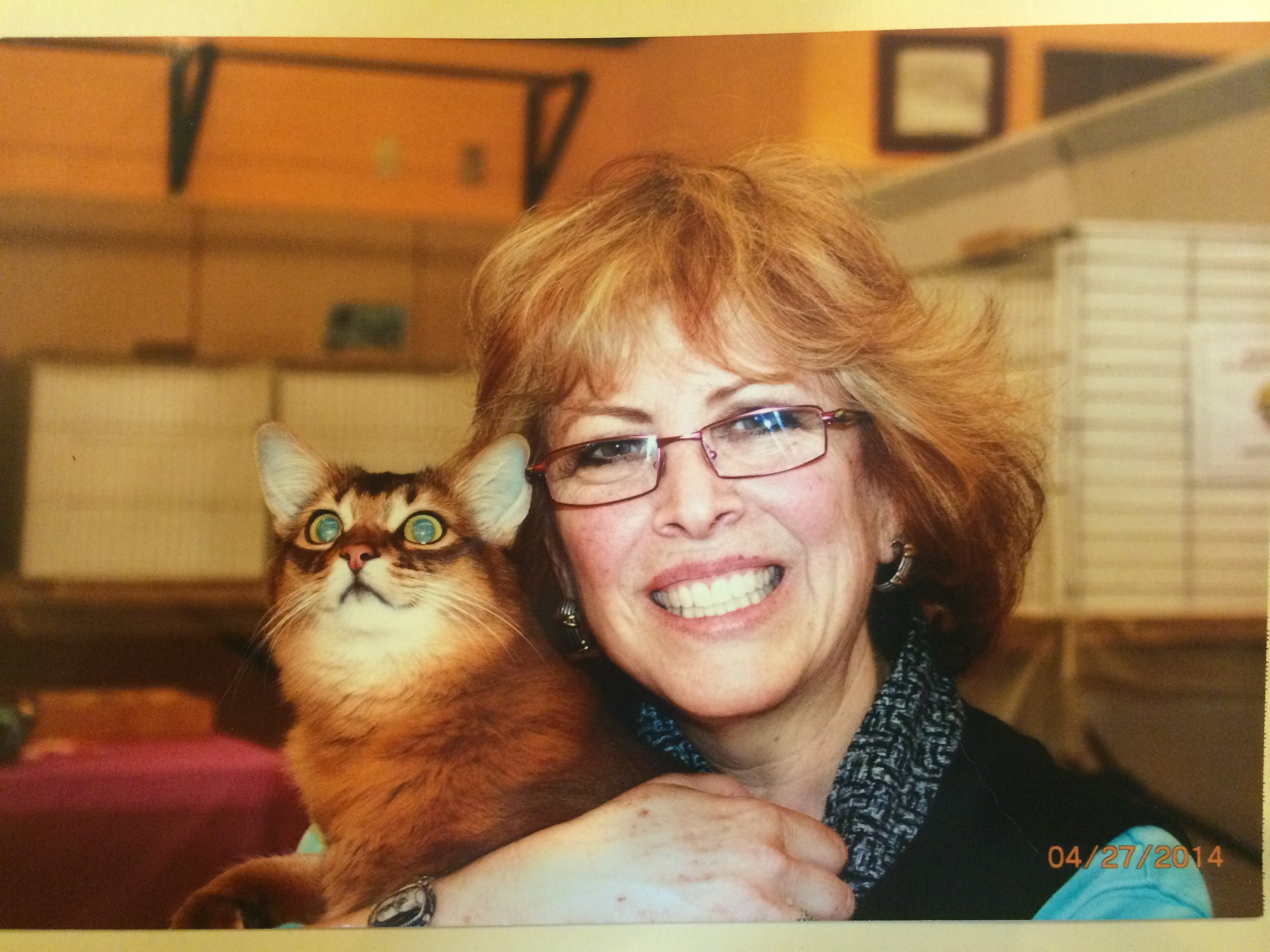 Linda Bohm, Co-Manager of New Jersey & New York's Biggest Cat Show/Expo, on the Garden State Cat Club and More