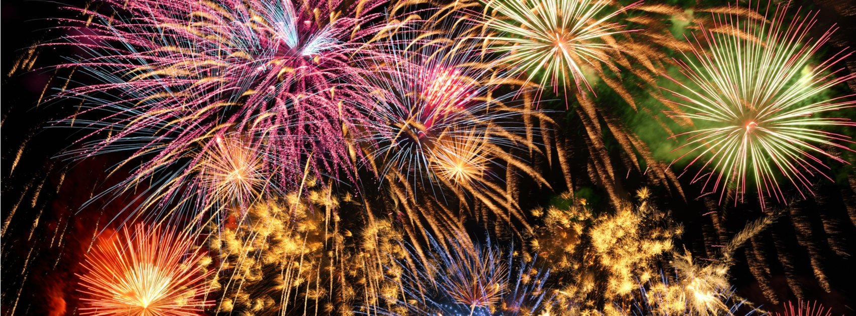 Fireworks and Your Pet: Preparing an Anxious Pet for 4th of July Celebrations