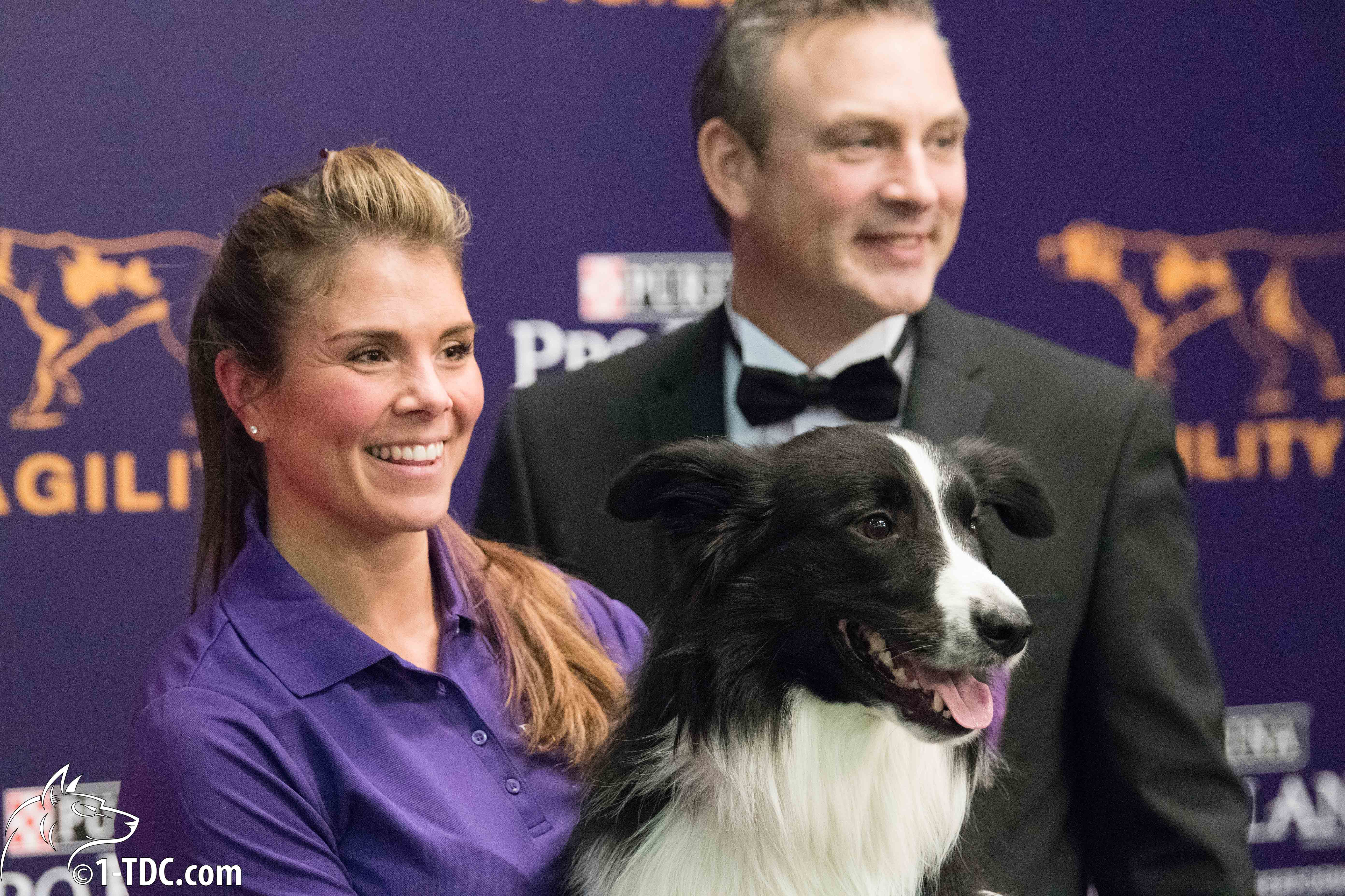 Interview with Westminster Agility Champion Amber McCune and Border Collie Kaboom