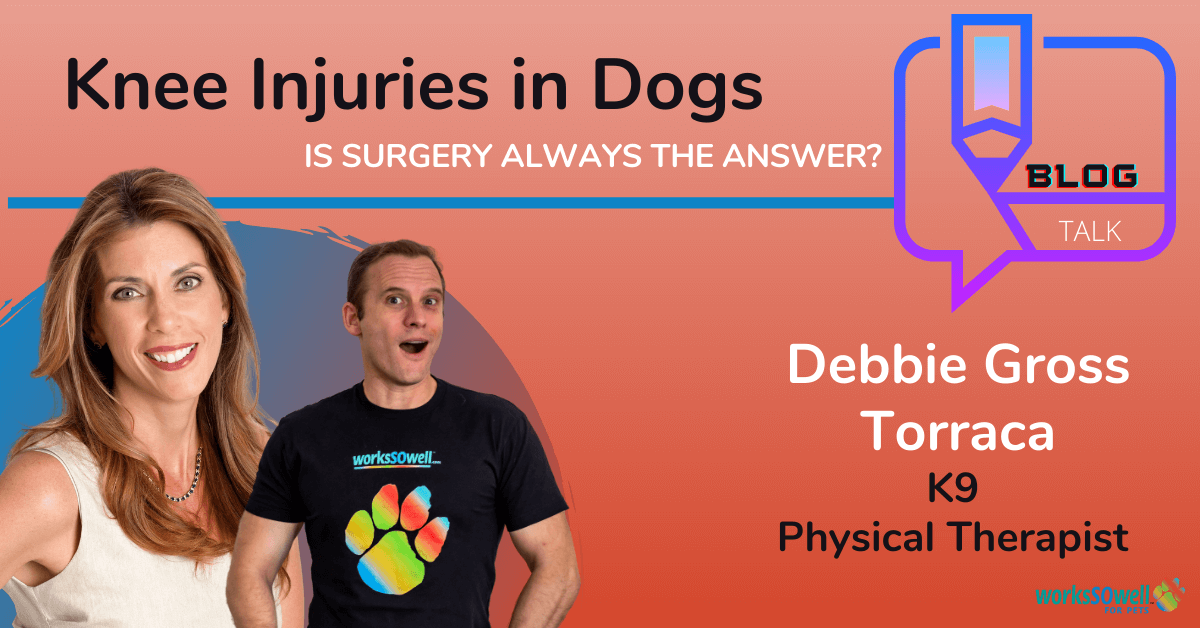 Knee Injuries in Dogs: Is Surgery Always the Answer?