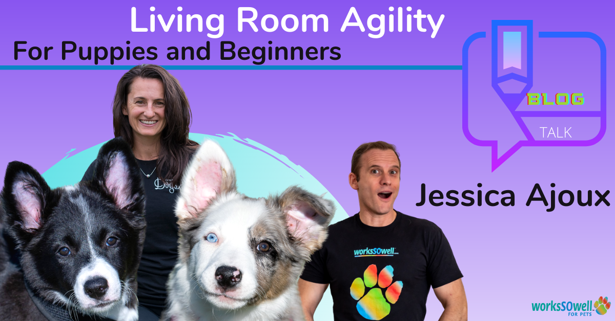 Living Room Agility for Puppies and Beginners