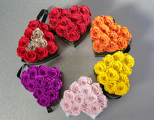 Eternal Rose  Colors Which One Delivers the Right Message