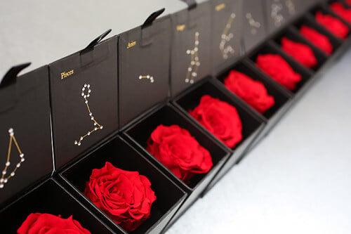 Eternal Roses Astrological Cancer Zodiac Gift Box