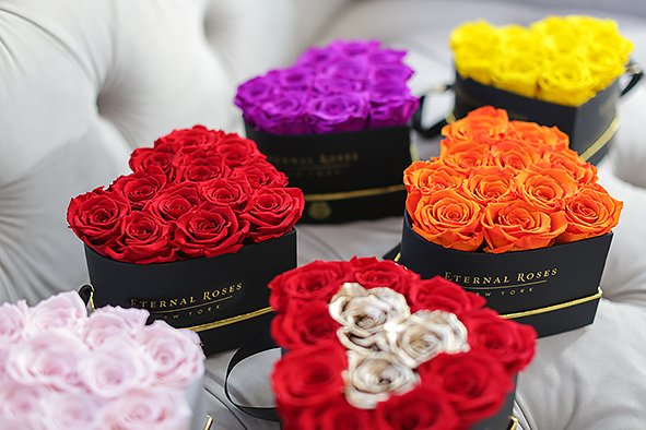 Eternal Roses color meanings and how it may affect your mood