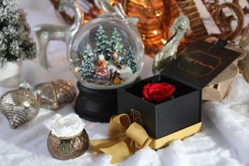 Eternal Roses Holiday Wish List