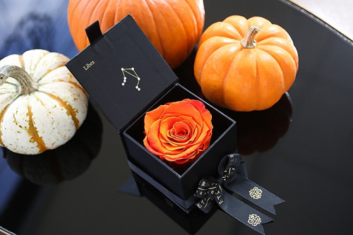 Eternal Roses and Libra Season