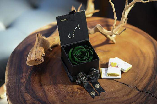 Eternal Roses and Scorpio Season