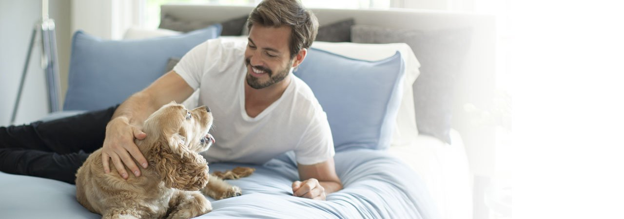 The Ultimate Bedding Guide for Pet Owners
