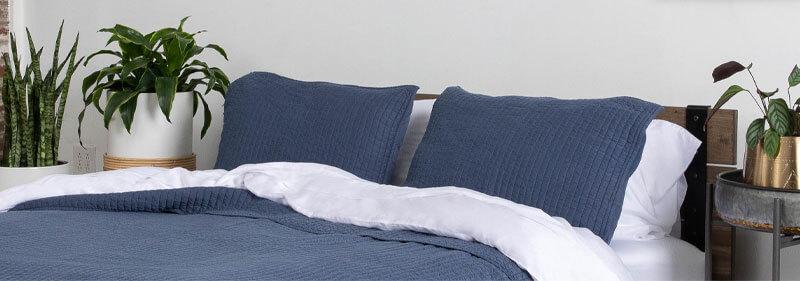 Best Bedroom Plants That Will Help Improve Sleep